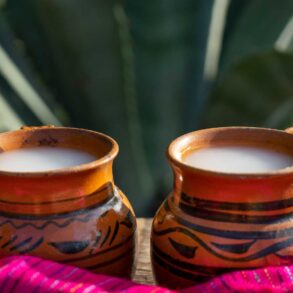 Pulque-bevanda-messicana-Coqtail-Milano
