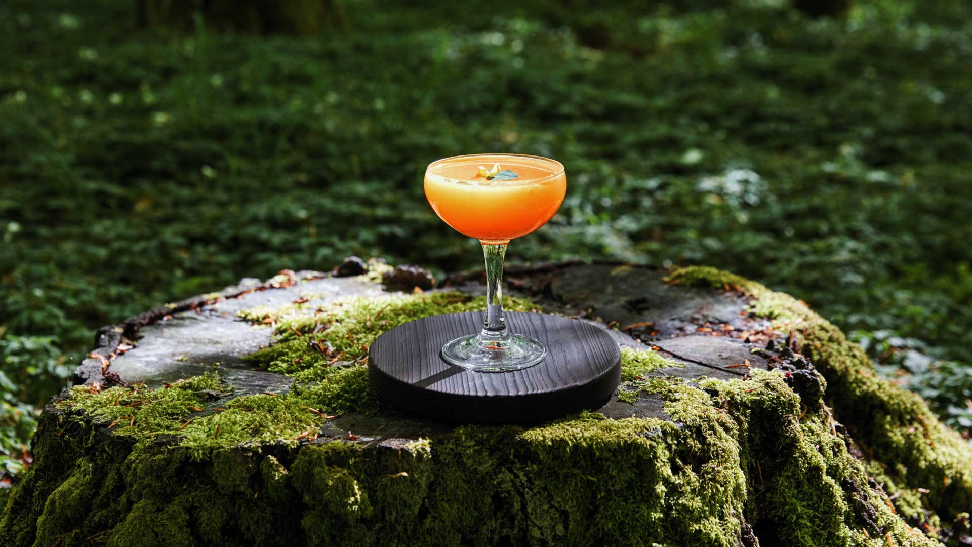 bar-all-aperto-più-grande-del-mondo-Svezia-Coqtail-Milano